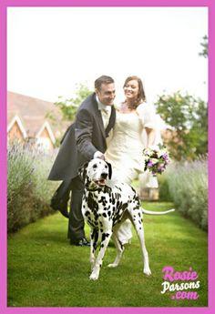 Dogs in weddings  Dog ring bearer  dog flower girl  dog walks down aisle at in wedding ceremony  dalmation black and white