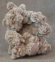Selenite Desert Rose, Samalayuca, Chihuahua, Mexico 2 lb 5 oz Specimen