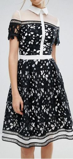 Order Chi Chi London Premium Lace Panelled Dress With Contrast Collar online today at ASOS for fast delivery, multiple payment options and hassle-free returns (Ts&Cs apply). Get the latest trends with ASOS. Chi Chi, Floral Midi Dress, Navy Dress, Contrast Collar, London, Fashion Online, Fashion Dresses, Lace, Womens Fashion