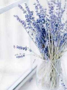 24 Good Morning Cards to Help you Start the Day Small vase Lavender stalks left to dry. Naturally beautiful and fragrant too.