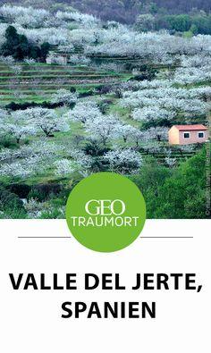Valle del Jerte, Spanien: Was macht das Valle del Jerte so besonders? Und wann solltest du das Tal im Westen Spaniens bei Plasencia am besten besuchen? Tipps und Infos findest du im Artikel Reisen In Europa, Geo, Portugal, Beautiful Places, Wanderlust, Explore, World, Travel, Paths
