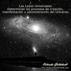 PRINCIPIOS Y LEYES UNIVERSALES. Existen muchas leyes como: Principio del Mentalismo, Principio de Correspondencia, Principio de Vibración, Principio de Polaridad, Principio de Ritmo, Principio de Causa y Efecto, Principio de Generación y La Ley de La Atracción es una de estás. Sigue leyendo en: http://katiuskagoldcheidt.com/principios-y-leyes-universales/