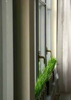 Wheat to decorate the windows Windows, Decor, Decoration, Dekoration, Inredning, Interior Decorating, Deco, Decorations, Window