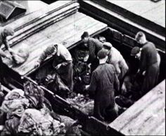 The food dropped by Allied planes over the west of the Netherlands was brought to the authorities.