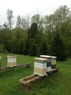 Not a good day for hive inspections.
