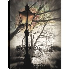 Hobbitholeco. P.T.Turk 'Street Lamps VI' 24-inch x 36-inch Ready-to-hang Gallery-wrapped Landscape Photography Wall Art