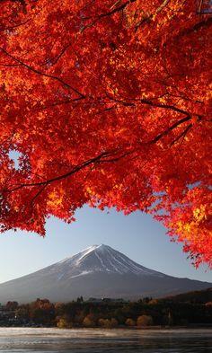 Japan..   www.facebook.com/loveswish