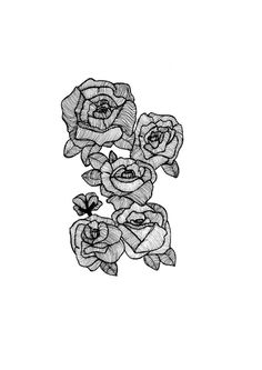 Black Line Roses Botanical Illustration // by StaggIllustration