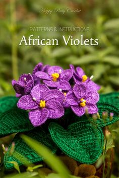 Crochet African Violet pattern by Happy Patty Crochet // The classic windowsill decor, and a very common home decor plant. The African Violets are as beautiful as they are timeless. A popular gift for Mother's Day and Valentine's Day.