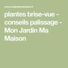 plantes brise-vue - conseils palissage - Mon Jardin Ma Maison