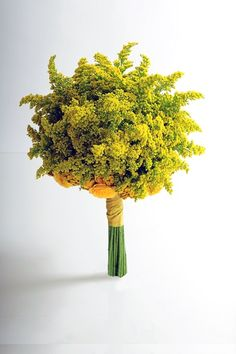 080914 goldenrod ~ This monochromatic wedding bouquet features and array of yellow flowers including solidago, spray roses and tansy (tanacetum). Yellow Wedding Flowers, Flower Bouquet Wedding, Rose Wedding, Yellow Roses, Floral Wedding, Trendy Wedding, Wedding Stuff, Wedding Dress, Picture Wedding Centerpieces