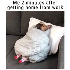 Work Humor, Merino Wool Blanket, Bed, Home, Stream Bed, Ad Home, Work Memes, Homes, Beds