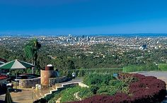 The view atop Mt Cootha - Brisbane