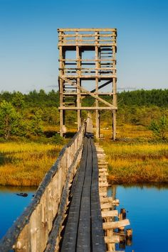 Männikjärve observation tower, Estonia