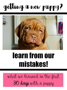 NEED to read this later. Tips for new puppy parents. Read before we get sammy. After 30 days with our new puppy there's lots we learned and lots we with we hand known! Check out our new puppy checklist of all our learnings! Tips And Tricks, Puppy Training Tips, Training Your Dog, Potty Training, Toilet Training, Training Classes, Labrador Puppy Training, Dog Training Methods, Leash Training