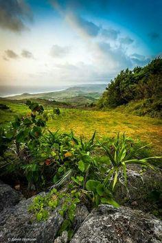 Barbados. .. my island home!