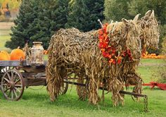 """""""Ghost horses"""" made out of old corn stalks. I'm always so impressed with how many farms go all-out for Halloween. Some beautiful arts and crafts can take place from that!"""