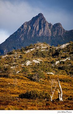 Cradle Mountain. Tasmania. Australia.
