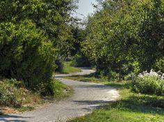 Circuit pédestre Bleu dans Bondoufle - Chemin serpentant vers la rue Désiré Prévost