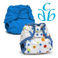 8/24/12 FYSF, Win (2) Rumparooz Diaper Covers!  Enter to win by clicking the image or visiting http://www.diaperjunction.com