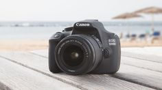 There are SLR cameras suitable for every type of photographer, from novices to professionals, but which one is right for you?
