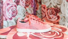 Puma Porcelain Rose Careaux Pink Blue, Blue And White, Vans Authentic, Porcelain, Street Style, Rose, Sneakers, Fitness, Fashion