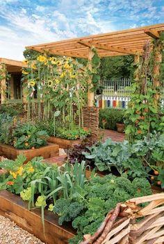 Backyard Vegetable Gardens, Vegetable Garden Design, Small Garden Design, Pool Garden, Small Garden Layout, Vegetables Garden, Potager Garden, Big Garden, Family Garden