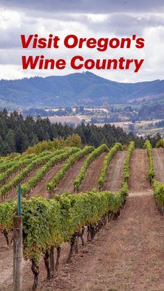 Oregon Wine Country, Visit Oregon, Willamette Valley, Washington County, Romantic Getaway, Pinot Noir, Outdoor, Travel, Outdoors
