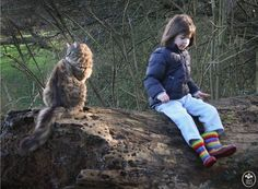 """6-year-old Iris Grace copes with autism by expressing herself through painting, but she's also received a heartwarming amount of help from her therapy cat Thula. """"Ever since we came home with Thula, this precious, magical kitten has cast a spell over Iris,"""" Arabella Carter-Johnson, Iris' photographer mom, reveals. """"They sit beside each other as Iris paints, and new doorways to communication have been opened, doors we had previously feared might be locked forever."""" Thanks to Thula, Iris…"""