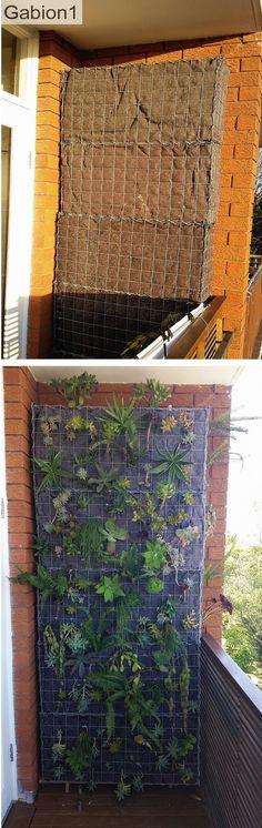 gabion baskets create a green wall vertical garden http://www.gabion1.com
