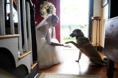 ♥♥♥  20 ideias super legais de fotos de casamento pra você roubar Ideias super originais de fotos de casamento lindas para roubar e fazer no seu. As fotos são uma das coisas mais especiais do casamento, então, capricha! http://www.casareumbarato.com.br/20-ideias-super-legais-de-fotos-pra-voce-roubar/