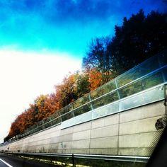 herfst langs de snelweg