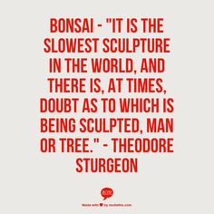 "Bonsai -   ""It is the slowest sculpture in the world, and there is, at times, doubt as to which is being sculpted, man or tree."" -   Theodore Sturgeon"