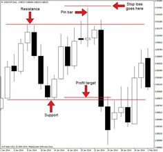 How To Trade With Pinbar Based Price Action Strategy | 1st Forex Broker