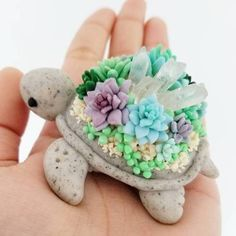 Turtle & succulents are poly clay Turtle & succulents are poly clay. Turtle & succulents are poly clay. Polymer Clay Turtle, Cute Polymer Clay, Cute Clay, Polymer Clay Charms, Diy Clay, Cute Crafts, Diy And Crafts, Arts And Crafts, Clay Animals