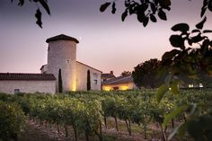 Located in the heart of the Gaillac Vineyard, Château de Salettes dates back to the and centuries and features air-conditioned rooms with views. Tous Au Restaurant, Hotel Restaurant, Outdoor Swimming Pool, Swimming Pools, Chateau Hotel, Spa, Hotels, France, Places