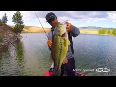 WHEN FISH SPY THE STORM® ARASHI® SPINBAIT, THEY CAN'T RESIST IT   Rapala Fishing Blog