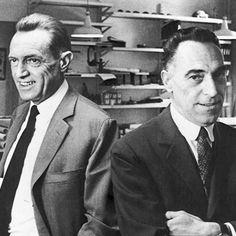 Pier Giacomo (Left) and Achille (Right) Castiglioni