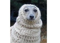Emma would love one of these.  Her ears get really cold, and she loves to snuggle in a blanket.