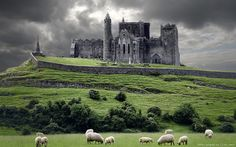 Bucket List: Visit castle in Ireland; The Rock of Cashel, Ireland- BREATHTAKING. Where St.Pat converted the people of Ireland to Catholicism Places Around The World, Oh The Places You'll Go, Places To Travel, Beautiful Castles, Beautiful Scenery, Simply Beautiful, Beautiful Things, Amazing Things, Absolutely Stunning