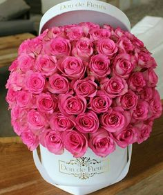 Flowers for February 14 - tarjetas - Beautiful Rose Flowers, Love Rose, Amazing Flowers, Beautiful Flowers, Beautiful Bouquets, Flower Box Gift, Flower Boxes, My Flower, Bouquet Box