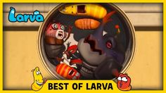 LARVA BEST OF LARVA ✔ Funny Cartoons for Kids ✔ Cartoons For Children ✔ ...