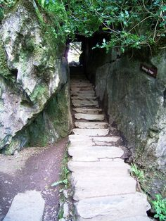 Wishing steps, grounds of Blarney Castle, County Cork, Ireland.  (I've walked down these with my eyes closed, as tradition dictates!)