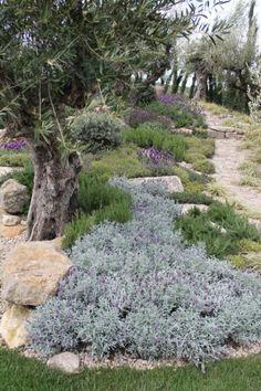 Stunning 45 Fantastic Mediterranian Garden for Front Yard Landscaping https://homadein.com/2017/06/25/45-fantastic-mediterranian-garden-front-yard-landscaping/