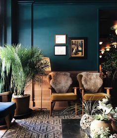 Home Decor Plants deep-sea teal walls with black & white graphic rug.Home Decor Plants deep-sea teal walls with black & white graphic rug Teal Rooms, Teal Living Rooms, Teal Walls, My Living Room, Living Room Decor, Dark Walls, Dark Teal Bedroom, Dark Painted Walls, Dining Room