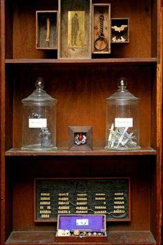 Cabinet de curiositè, Jean Duhurt