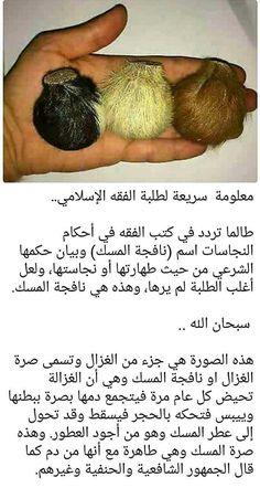 Islam Hadith, Islam Quran, Health Facts, Health Diet, Islamic Inspirational Quotes, Islamic Quotes, Vie Motivation, Favorite Book Quotes, Islamic Studies