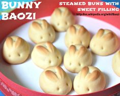 EASTER BUNNY BAOZI w/ choice of sweet fillings: Dousha-baozi, Red Bean bun: http://www.thefreshloaf.com/recipes/steamedbuns Lotus Seed bun: http://www.bellaonline.com/articles/art178101.asp Kaya-baozi, Coconut Jam bun: http://thaifood.about.com/od/thairecipesstepbystep/ss/kayacoconutjam.htm Naihuang-baozi, Custard bun: http://awayofmind.blogspot.com/2010/12/steamed-creamy-custard-bun-nai-huang.html BAOZI aka bao, humbow, etc is a type of steamed, filled bun in various Chinese cuisines.