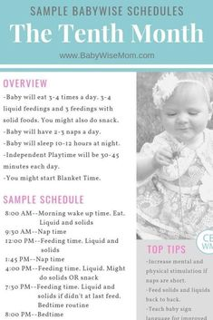 Baby Feeding Schedule, Baby Schedule, Toddler Schedule, Sleep Schedule, 9 Month Old Schedule, Baby Sleep Regression, Moms On Call, 9 Month Old Baby, Baby Samples