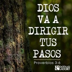 «Busca su voluntad en todo lo que hagas, y él te mostrará cuál camino tomar». —Proverbios 3:6   #VersosyFrases #ActivaVida #Cristianos #Dios